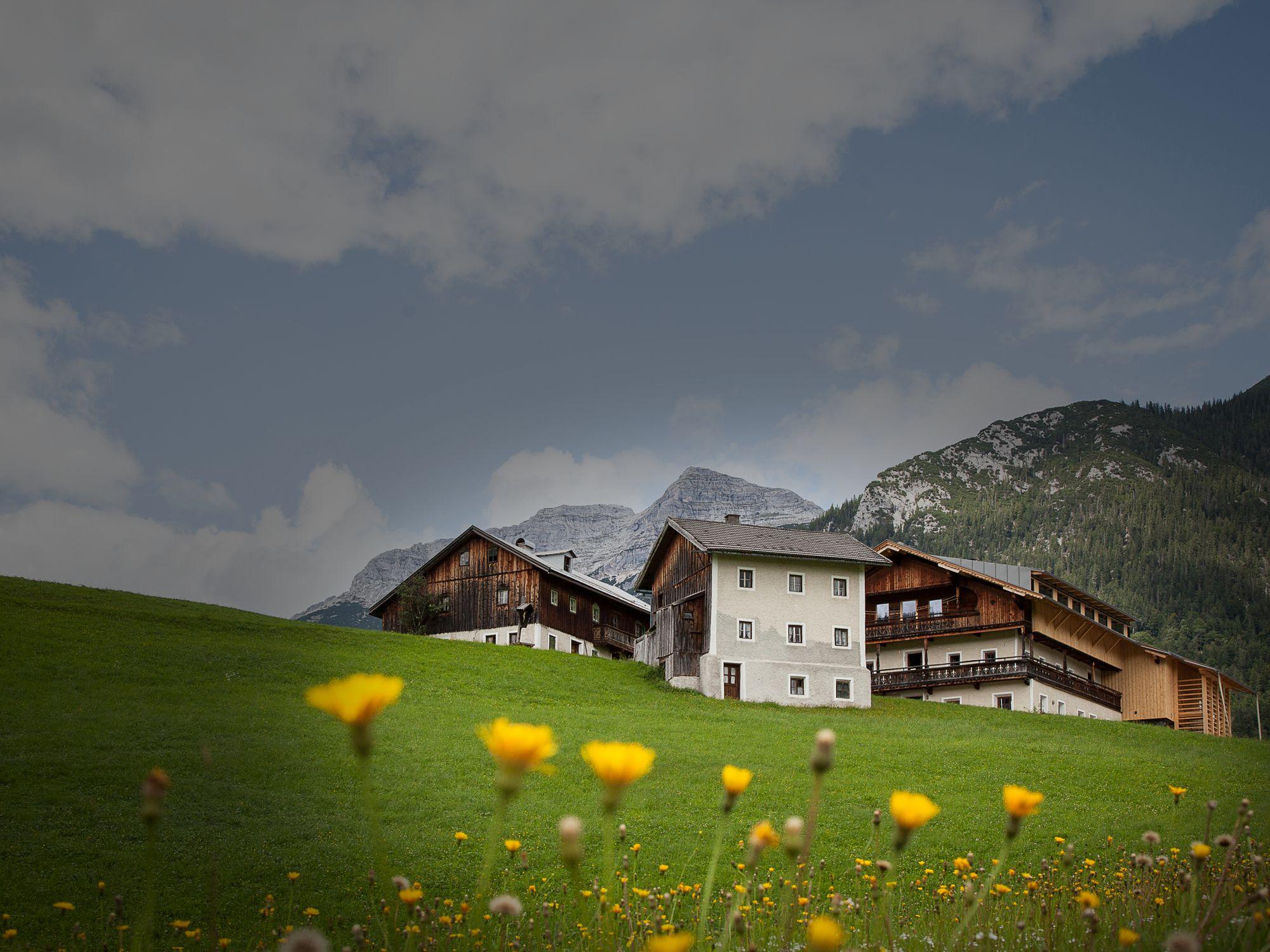 Mesnerhof-C Tirol Sommer
